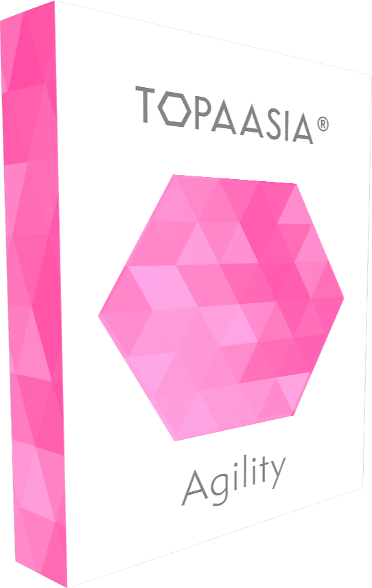 How Topaasia® - serious games work in a nutshell